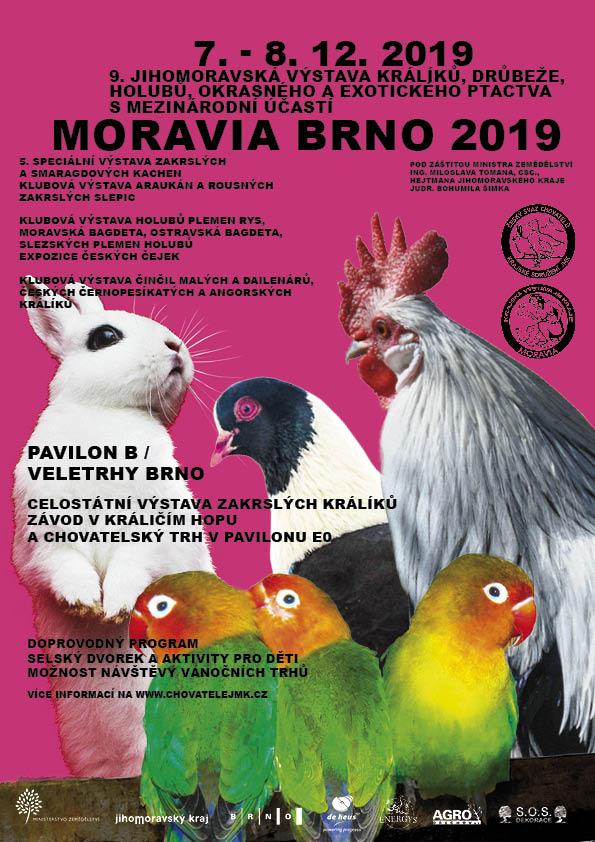 moravia_A4_190714_web72_NN